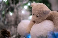 Beige teddy bear hugs snowballs with christmas tree and lights blurred in the background. royalty free stock photos