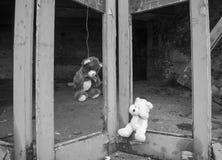 Teddy Bear Hung On Doors dell'orso di Fie Station Building With Other abbandonato abbandonato che grida nel bianco e nero Immagini Stock