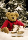 Teddy Bear with Ice Skates - vertical. Teddy bear in festive red sweater sitting in snow holding vintage ice skates Royalty Free Stock Photo