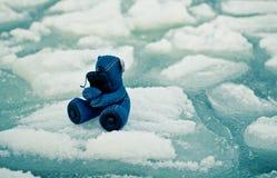 Teddy bear on iceberg. NOdessa 2014 Stock Photo