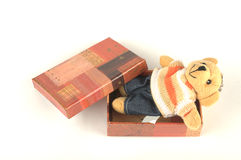 Teddy bear ih the box. Gift for St. Valentine's day Royalty Free Stock Images