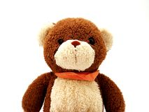 Teddy bear isolated stock photos