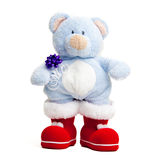 Teddy bear . Isolated over white. Royalty Free Stock Images
