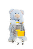 Teddy bear . Isolated over white. Stock Photography