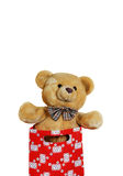 Teddy-bear isolated on white. Toy in gift bag isolated on white with clipping path Stock Photos