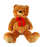 Teddy Bear. Isolated on white background royalty free stock image
