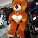 Teddy Bear For Kids foto de archivo