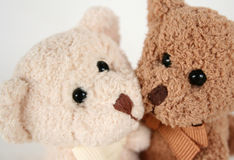 Teddy Bear Kisses and Hugs. Brown and white teddy bears cheek to cheek Stock Image