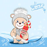 Teddy bear in a knitted hat Royalty Free Stock Photo