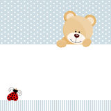 Teddy bear and ladybird background. Scalable vectorial image representing a teddy bear and ladybird background, isolated on white Royalty Free Stock Images