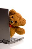Teddy bear on laptop Stock Images