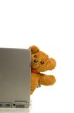 Teddy bear and laptop royalty free stock images