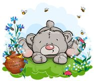 Free Teddy Bear Lies On A Clearing With A Pot Of Honey Stock Images - 123217904