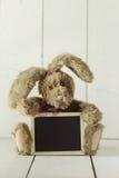 Teddy Bear Like Home Made Bunny Rabbit op Houten Witte Backgroun Stock Afbeelding