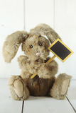 Teddy Bear Like Home Made Bunny Rabbit på trävita Backgroun Royaltyfri Bild
