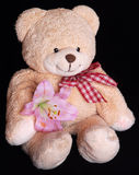 Teddy bear with lily flower Stock Photo