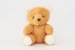 Teddy Bear looks cute. Royalty Free Stock Photos