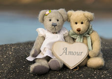 Teddy bear in love. A pair of teddy bear and a label with the word love in French Stock Images