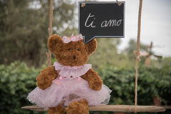 Teddy bear in love. A teddy bear on a swing that sends a message of love Stock Photo