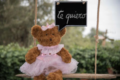 Teddy bear in love. A teddy bear on a swing that sends a message of love Stock Photography