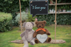 Teddy bear in love. Two teddy bears on a swing that send a message of love Stock Images