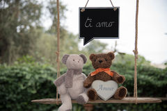 Teddy bear in love. Two teddy bears on a swing that send a message of love Royalty Free Stock Photo