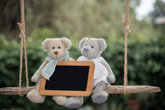 Teddy bear in love. Two teddy bear on a swing, holding a sign where you can write a message Royalty Free Stock Photography