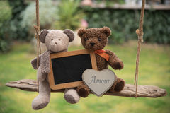 Teddy bear in love. Two teddy bear on a swing, holding a sign where you can write a message Royalty Free Stock Images