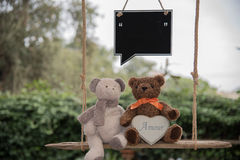 Teddy bear in love. Two teddy bear on a swing, holding a sign where you can write a message Stock Photography