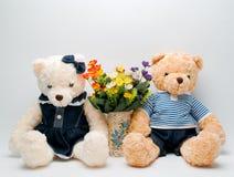 Teddy bear lovers Stock Photos
