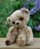 Teddy-bear Lucky Stock Photos
