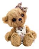 Teddy-bear Lucky, isolated Royalty Free Stock Photography