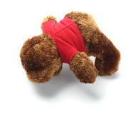 Teddy Bear Lying Face Down Stock Images