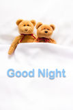 Teddy Bear lying in the white bed with message ' Good night '.  Stock Photography