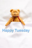 Teddy Bear lying in the white bed with message; Happy Tuesday; Stock Photo