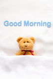 Teddy Bear lying in the white bed with message ' Good morning ' Stock Photography