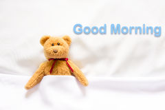 Teddy Bear lying in the white bed with message ' Good morning ' Royalty Free Stock Images