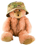 Teddy bear in a military hat Stock Image