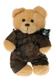 Teddy bear in military uniform isolated. On white Stock Image