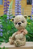 Teddy-bear Misha On A Little Board Royalty Free Stock Photography