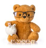 Teddy bear. Money savings concept isolated white background royalty free stock photo