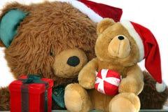 Teddy bear mother and baby stock photos