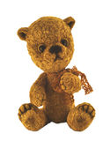 Teddy-bear by name of Gold Royalty Free Stock Image