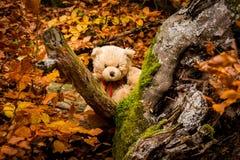 Teddy bear Dranik in autumn czech republic. Teddy bear name`s Dranik in cloudy autumn landscape in Czech republic Stock Photos