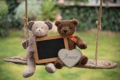 Teddy Bear nell'amore Immagini Stock Libere da Diritti