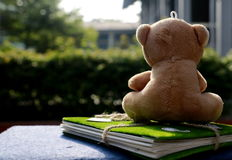 Teddy bear notebook Stock Photos