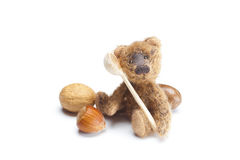 Teddy Bear, nuts and wooden spoon Stock Image