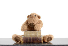 Teddy bear with old books Royalty Free Stock Images