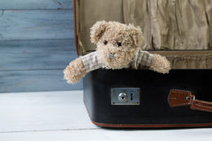 Teddy bear in an old leather suitcase. On wooden table royalty free stock images