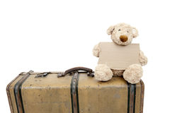 Teddy bear on an old vintage suitcase Royalty Free Stock Photography